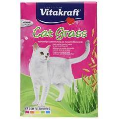 Cat Grass 50g