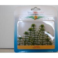 Пластмассовые растения 10 см