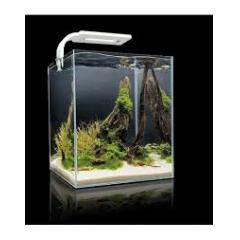 Aquael Shrimp Set 19l White (LED)